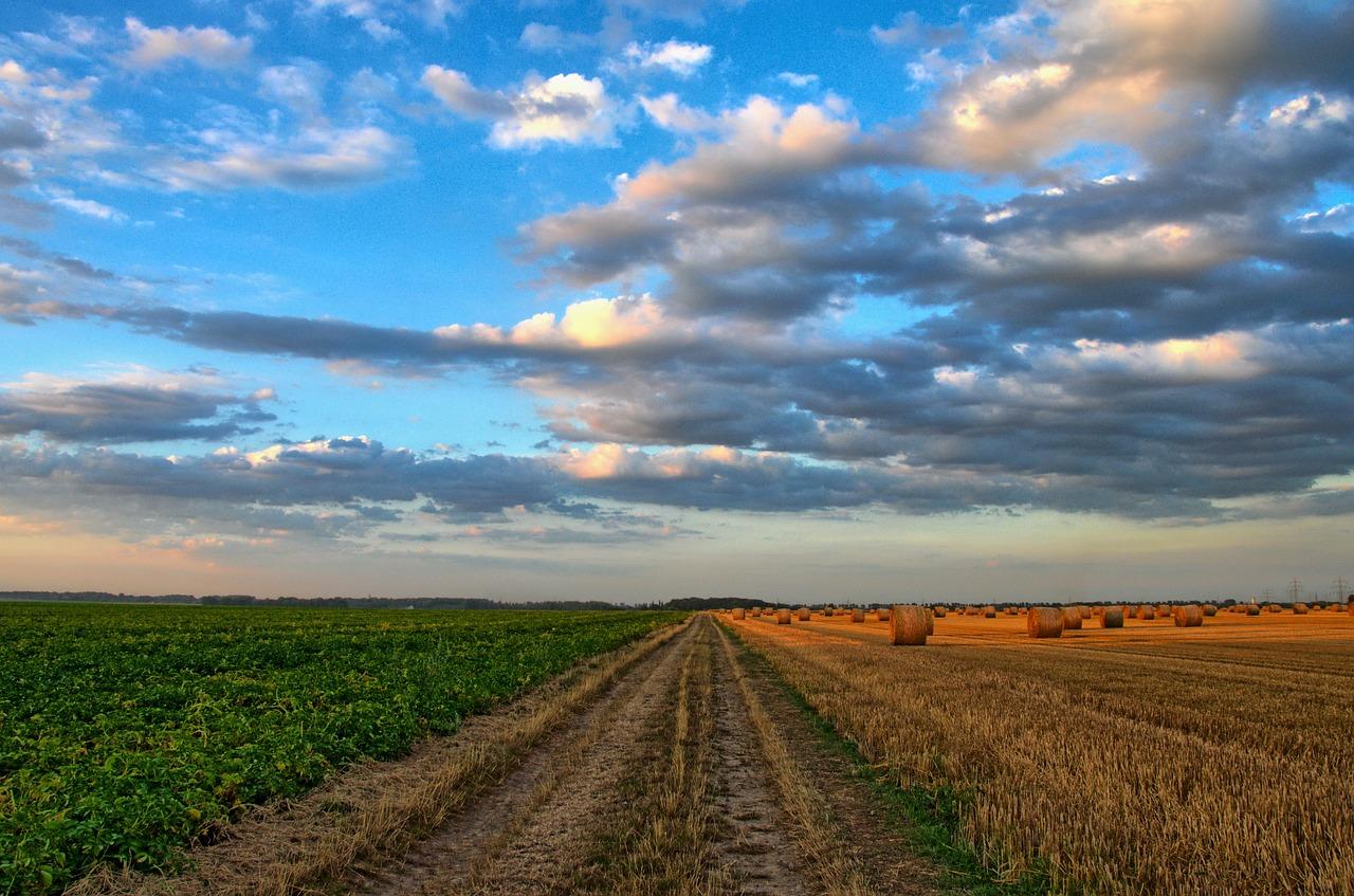 Gospodarstwo rolne - dobre wyposażenie