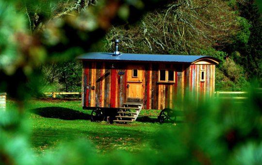 Plusy drewnianego domku